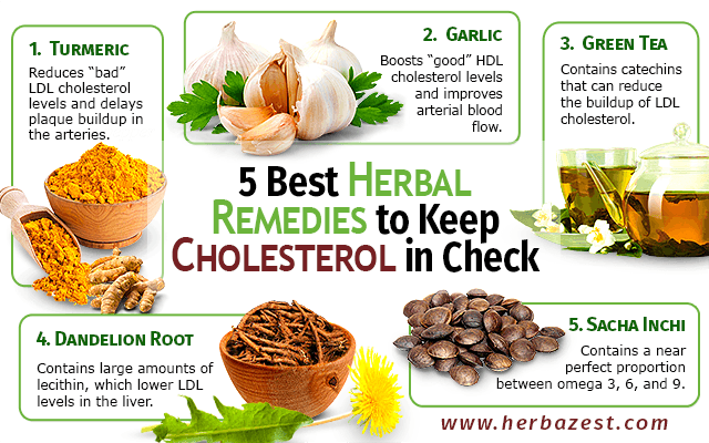 Natural Cures For High Cholesterol Home Remedies